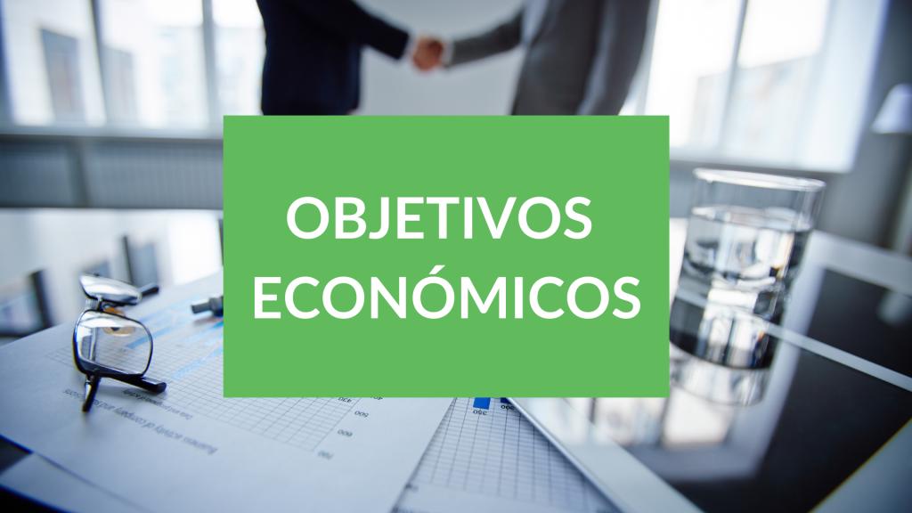 objetivos del milenio económicos